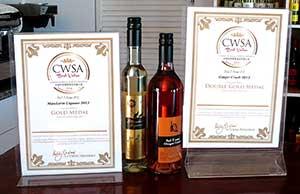 2014 CWSA Awards